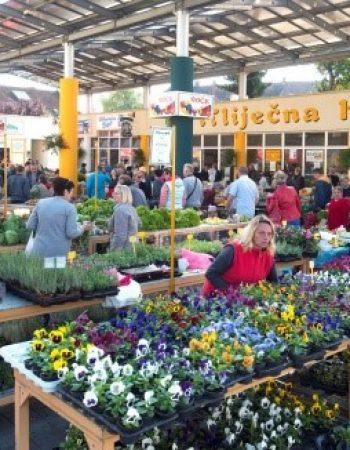 Mestna tržnica Varaždin