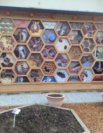 Čebelarstvo Tigeli – Čebelarski muzej