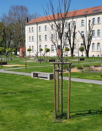 Zavod Marianum Veržej – Rokodelski center DUO
